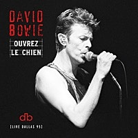 Thumbnail for the David Bowie - Look Back In Anger (Live at the Starplex Amphitheater, Dallas, 13th October, 1995) link, provided by host site