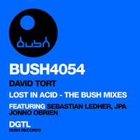 Thumbnail for the David Tort - Lost in Acid (The Bush Mixes) link, provided by host site