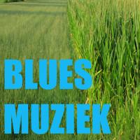 Thumbnail for the Johnny B - Louisiana Bluesmuziek link, provided by host site