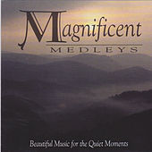 Thumbnail for the Lari Goss - Magnificent Melodies link, provided by host site