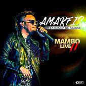 Thumbnail for the Amarfis y La Banda De Atakke - Mambo Live II link, provided by host site