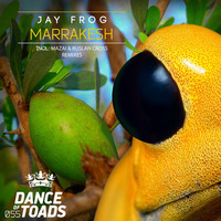 Thumbnail for the Jay Frog - Marrakesh Remixes 2 link, provided by host site