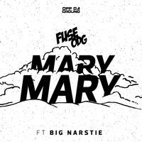Thumbnail for the Fuse ODG - Mary Mary link, provided by host site
