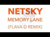 Thumbnail for the Netsky - Memory Lane (Flava D Remix) link, provided by host site
