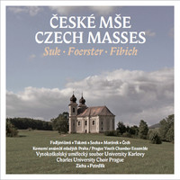 Thumbnail for the Zdeněk Fibich - Missa brevis, Op. 21: Kyrie link, provided by host site