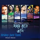 Thumbnail for the Samina Chowdhury - Mone Mone link, provided by host site