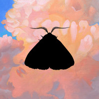 Thumbnail for the Chairlift - Moth to the Flame (Olga Bell Remix) link, provided by host site