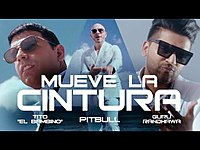 Thumbnail for the Pitbull - Mueve La Cintura link, provided by host site