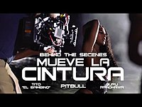 Thumbnail for the Pitbull - Mueve La Cintura (Official) link, provided by host site