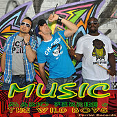 Thumbnail for the Wild Boys - Music (Instrumental Mix) link, provided by host site