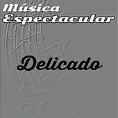 Thumbnail for the Werner Müller - Música Espectacular, Delicado link, provided by host site