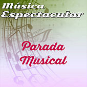 Thumbnail for the Werner Müller - Música Espectacular, Parada Musical link, provided by host site