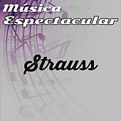 Thumbnail for the Werner Müller - Música Espectacular, Strauss link, provided by host site