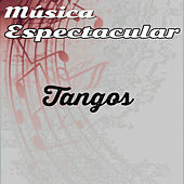 Thumbnail for the Werner Müller - Música Espectacular, Tangos link, provided by host site