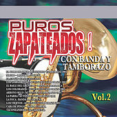Thumbnail for the Banda La Costeña - Nacho link, provided by host site