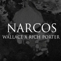 Thumbnail for the Wallace - Narcos link, provided by host site