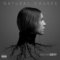 Thumbnail for the Skylar Grey - Natural Causes link, provided by host site
