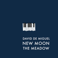 Thumbnail for the David de Miguel - New Moon (The Meadow) link, provided by host site