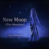 Thumbnail for the Luke Woodapple - New Moon (The Meadow) (Piano Solo Fom the Movie: The Twilight Saga) link, provided by host site