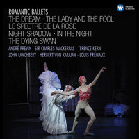Thumbnail for the Vincenzo Bellini - Night Shadow (1996 Digital Remaster): Pas de deux link, provided by host site