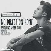 Thumbnail for the Lostly - No Direction Home link, provided by host site