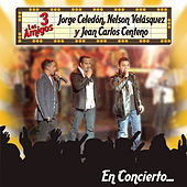 Thumbnail for the Jorge Celedón - No te Olvidare (En Vivo Version) link, provided by host site