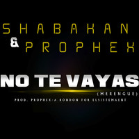Thumbnail for the Prophex - No Te Vayas link, provided by host site