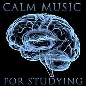 Thumbnail for the Study Music - Nocturne No. 1 in C Minor, Op. 48 link, provided by host site