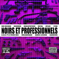 Thumbnail for the Royal - Noirs et professionnels link, provided by host site