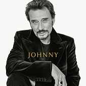 Thumbnail for the Johnny Hallyday - Non je ne regrette rien link, provided by host site