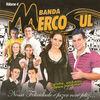 Thumbnail for the Banda Mercosul - Nossa Felicidade É Fazer Você Feliz, Vol. 4 link, provided by host site