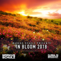 Thumbnail for the Cosmic Gate - Not Enough Time (GDJB In Bloom 2018) link, provided by host site