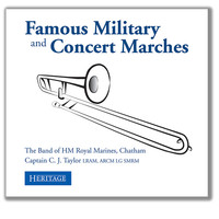 Thumbnail for the Edward Elgar - Not Entered: Pomp and Circumstance March No. 1 link, provided by host site