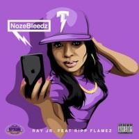 Thumbnail for the The Chopstars - NozeBleedz (ChopNotSlop Remix) link, provided by host site