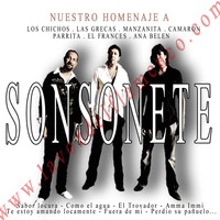 Thumbnail for the Sonsonete - Nuestro Homenaje a link, provided by host site