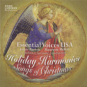 Thumbnail for the Essential Voices USA - O Holy Night (Cantique de Noel) (arr. R. Nowlin for choir and harp) link, provided by host site