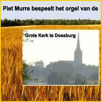 Thumbnail for the Feike Asma - Op de Bergen en in Dalen link, provided by host site