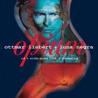 Thumbnail for the Ottmar Liebert + Luna Negra - Opium link, provided by host site