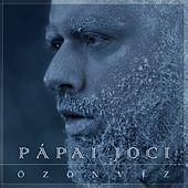 Thumbnail for the Papai Joci - Özönvíz link, provided by host site