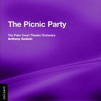 Thumbnail for the Palm Court Theatre Orchestra - Palm Court Theatre Orchestra: Picnic Party (The) link, provided by host site