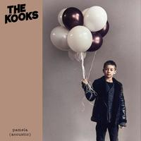 Thumbnail for the The Kooks - Pamela (Acoustic) link, provided by host site
