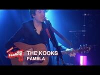 Thumbnail for the The Kooks - Pamela (This Feeling TV) link, provided by host site