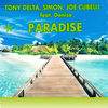 Thumbnail for the Tony Delta - Paradise link, provided by host site
