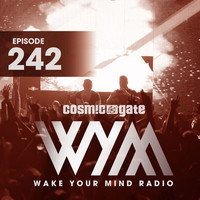 Thumbnail for the Aly & Fila - Paralized (WYM242) - Vintage & Morelli Extended Remix link, provided by host site