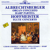 Thumbnail for the Anna Lelkes - Partita in F Major: I. Presto link, provided by host site