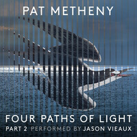 Thumbnail for the Pat Metheny - Pat Metheny: Four Paths of Light, Pt. 2 link, provided by host site