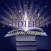 Thumbnail for the Musik für das Studium - Pavane Pour une Infante Defunte (Pavane for a Dead Princess) link, provided by host site