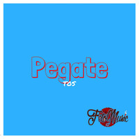 Thumbnail for the TOS - Pegate link, provided by host site