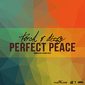 Thumbnail for the Dizzy - Perfect Peace link, provided by host site