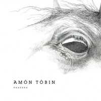 Thumbnail for the Amon Tobin - Phaedra link, provided by host site
